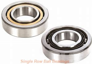 SKF 304SG  Single Row Ball Bearings